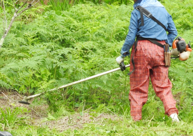 中野区で草刈りにかかる料金相場は?追加料金や業者選びのコツまで解説